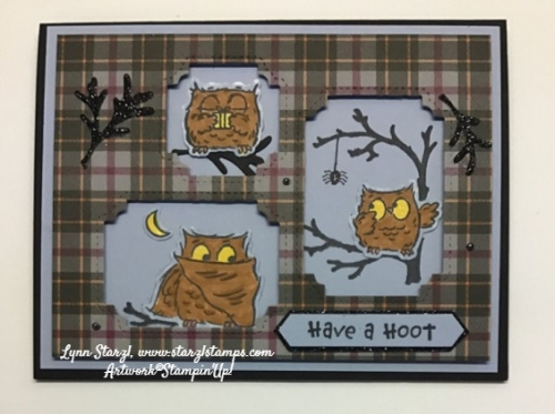 Have a Hoot Plaid 3