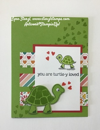 Turtle Friends DSP