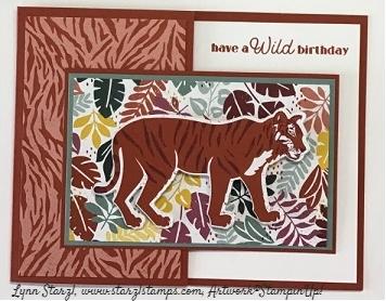 Wild Cats 1
