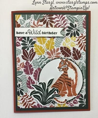Wild Cats Circle